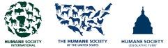 HSFamily logo ribbon