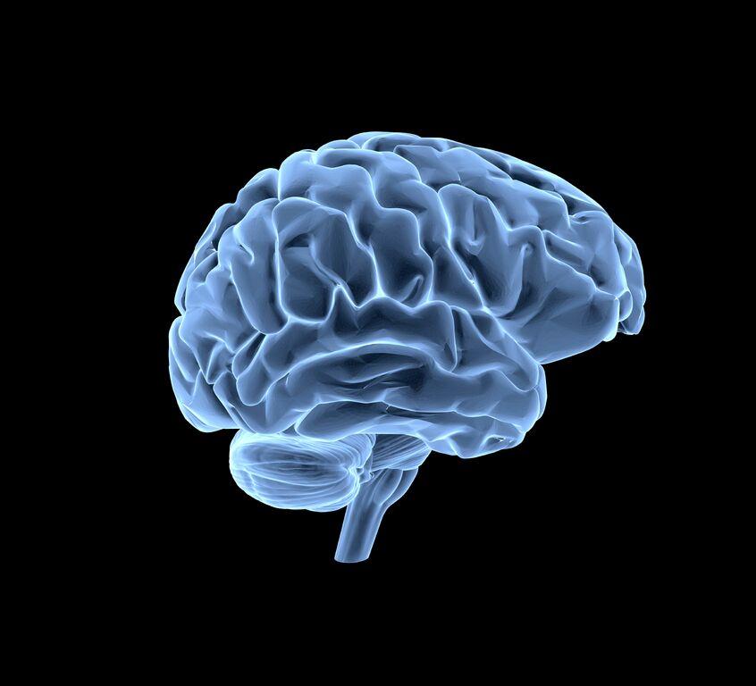 brain_istock